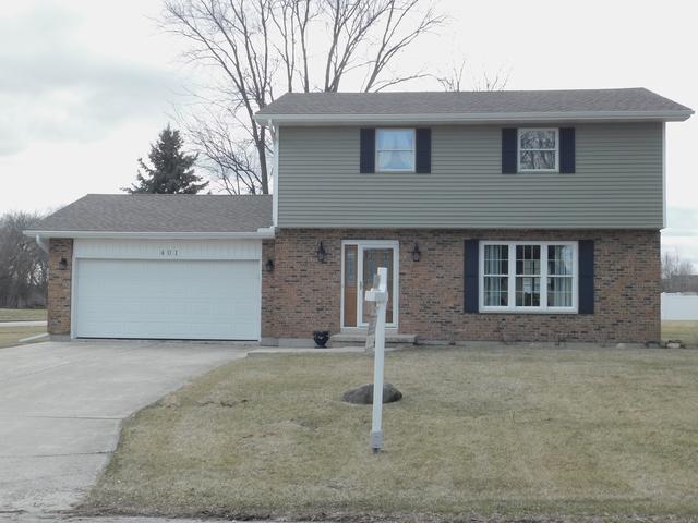 401 N View Street, Hinckley, IL 60520 (MLS #09872339) :: Littlefield Group