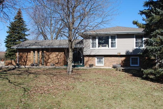 541 Oak Street, Peotone, IL 60468 (MLS #09873914) :: Littlefield Group