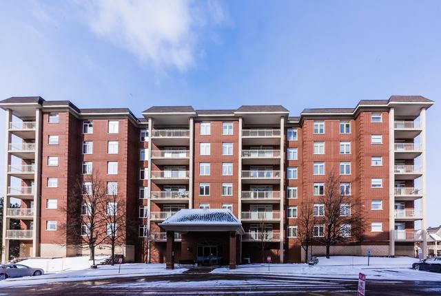 8400 Callie Avenue #603, Morton Grove, IL 60053 (MLS #09874713) :: The Jacobs Group