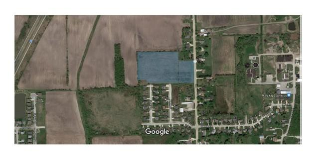 1000 N Division Street, Braidwood, IL 60408 (MLS #09875313) :: The Jacobs Group