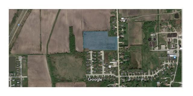 1000 N Division Street, Braidwood, IL 60408 (MLS #09875313) :: Littlefield Group
