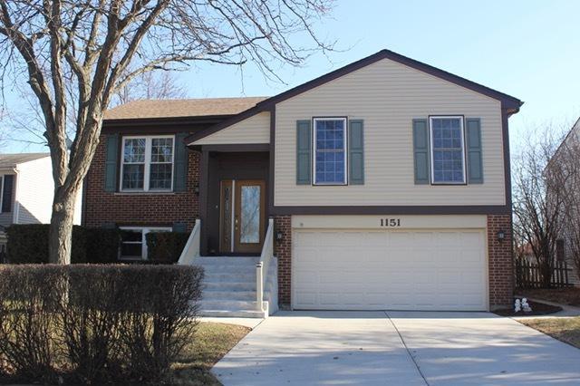 1151 W Bryn Mawr Avenue, Roselle, IL 60172 (MLS #09875907) :: Domain Realty