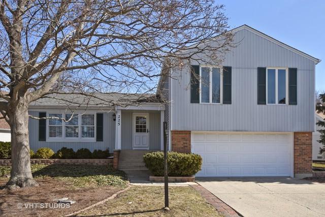 225 Alexandria Drive, Vernon Hills, IL 60061 (MLS #09876542) :: The Jacobs Group