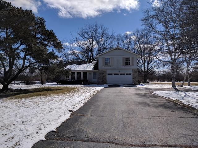 1903 W Hunters Lane, Spring Grove, IL 60081 (MLS #09877287) :: The Jacobs Group