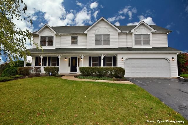653 Downing Street, Elburn, IL 60119 (MLS #09877367) :: The Jacobs Group