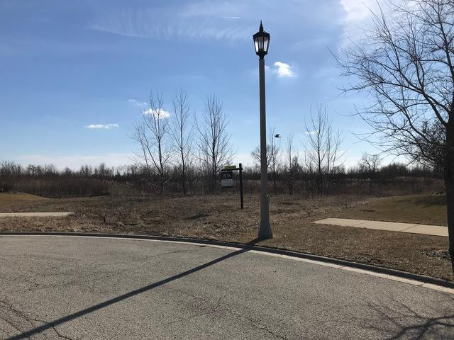 898 Snow Street, Sugar Grove, IL 60554 (MLS #09877930) :: The Dena Furlow Team - Keller Williams Realty