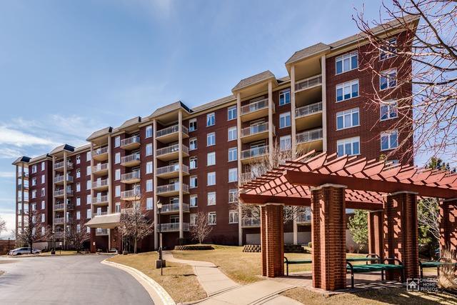8300 Callie Avenue #211, Morton Grove, IL 60053 (MLS #09878915) :: The Jacobs Group