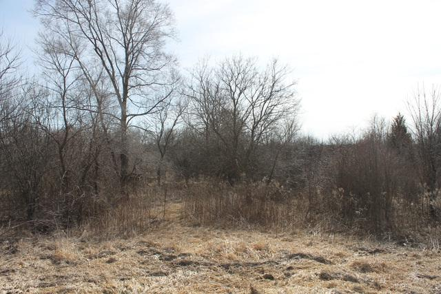 Lot 1 Fabyan Parkway, Elburn, IL 60119 (MLS #09879185) :: Domain Realty