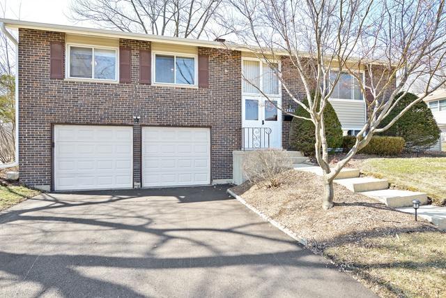 6118 Sherman Drive, Woodridge, IL 60517 (MLS #09880211) :: The Jacobs Group