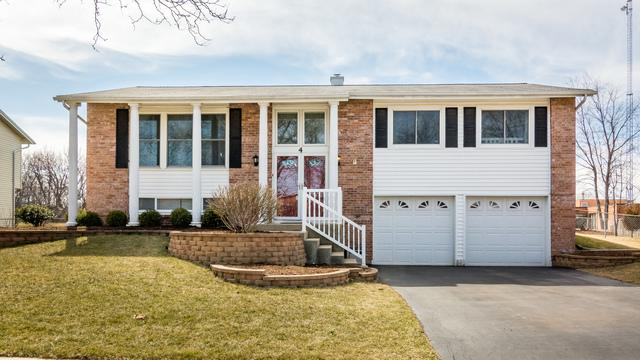 4 Purchase Court, Bolingbrook, IL 60440 (MLS #09880563) :: Littlefield Group