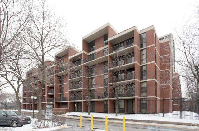 3041 S Michigan Avenue #204, Chicago, IL 60616 (MLS #09880567) :: The Jacobs Group