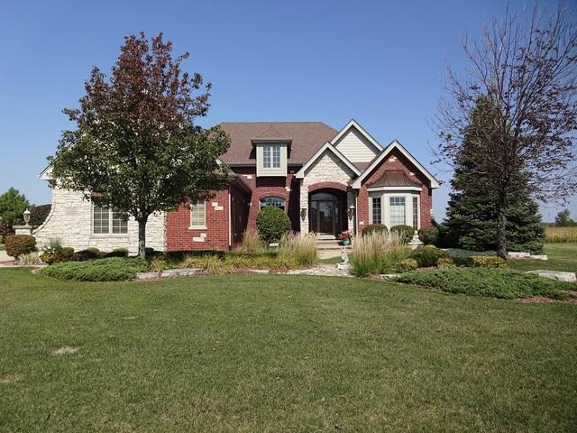 8636 Pine Ridge Drive, Frankfort, IL 60423 (MLS #09880639) :: The Jacobs Group