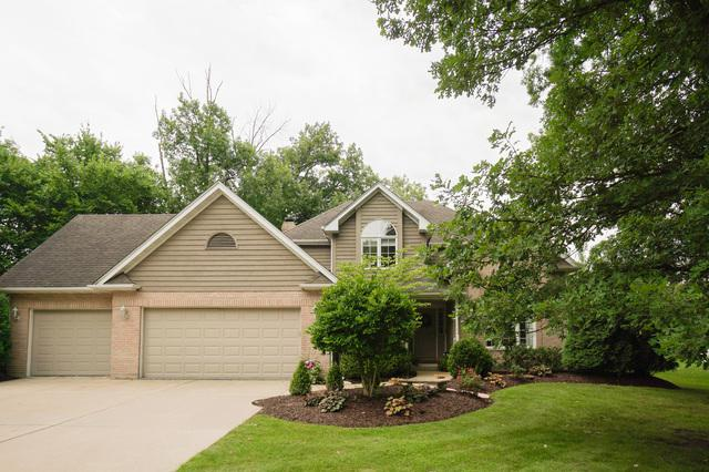 330 Ashley Drive, New Lenox, IL 60451 (MLS #09881009) :: The Jacobs Group