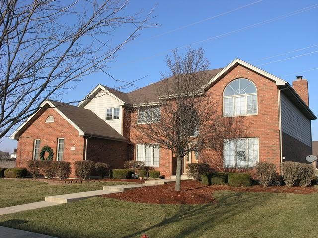 20077 Brendan Street, Frankfort, IL 60423 (MLS #09881242) :: The Jacobs Group