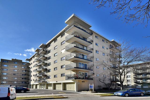 315 Des Plaines Avenue #307, Forest Park, IL 60130 (MLS #09881343) :: The Jacobs Group