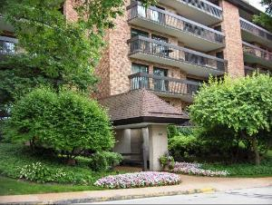3801 Mission Hills Road #405, Northbrook, IL 60062 (MLS #09881457) :: Domain Realty
