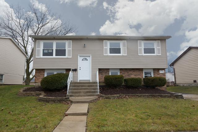 19904 Arroyo Avenue, Lynwood, IL 60411 (MLS #09881696) :: The Jacobs Group