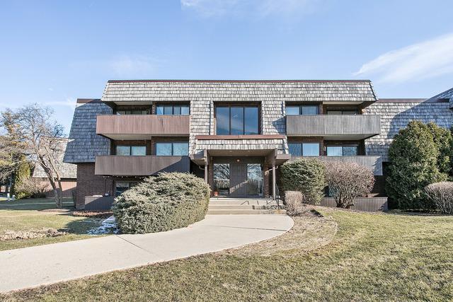 491 Timber Ridge Drive #101, Carol Stream, IL 60188 (MLS #09881990) :: The Jacobs Group