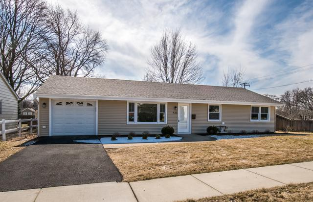 435 E State Street, South Elgin, IL 60177 (MLS #09881998) :: The Jacobs Group
