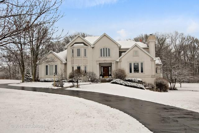 3N327 Woodcrest Court, Elburn, IL 60119 (MLS #09882092) :: The Jacobs Group