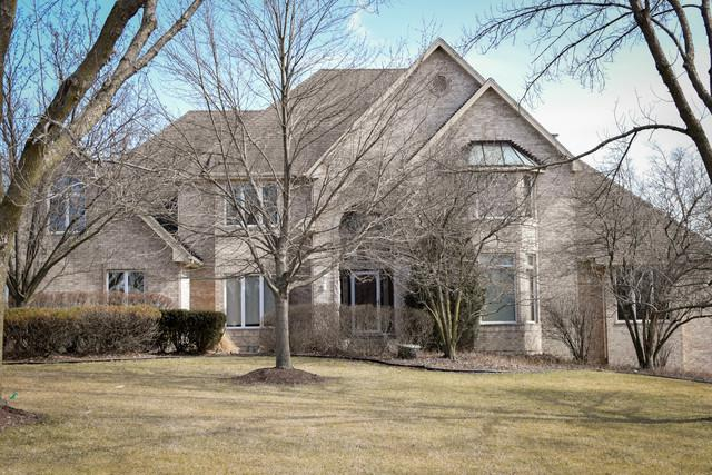 16431 S Kensington Drive S, Homer Glen, IL 60491 (MLS #09882349) :: Domain Realty