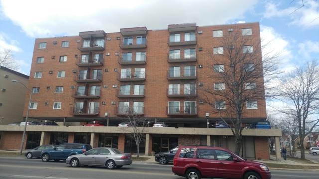 7830 W North Avenue #309, Elmwood Park, IL 60707 (MLS #09882864) :: The Jacobs Group