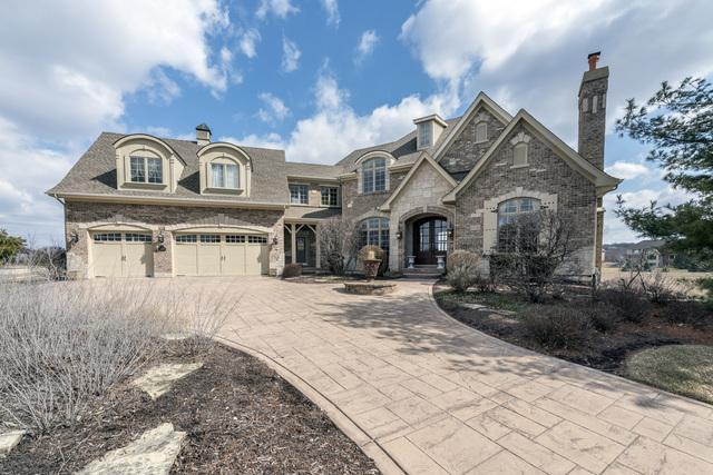 5N155 Prairie Lakes Boulevard, St. Charles, IL 60175 (MLS #09883104) :: Lewke Partners