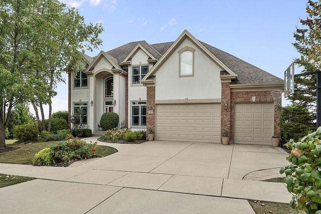 381 Torrey Pines Way, Vernon Hills, IL 60061 (MLS #09883394) :: The Schwabe Group