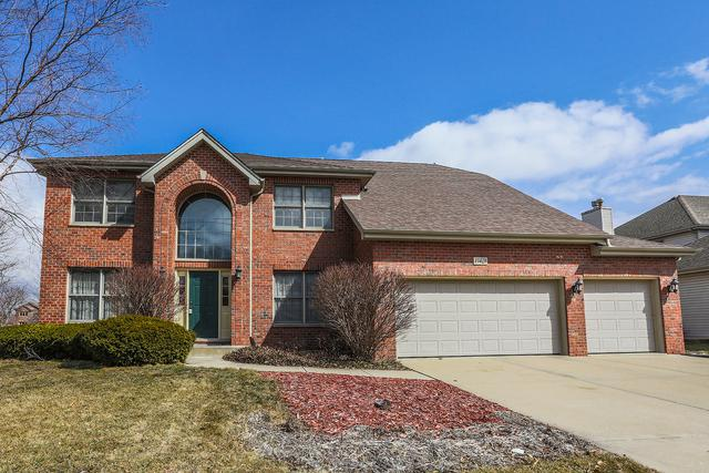13429 Blackstone Lane, Plainfield, IL 60585 (MLS #09883408) :: The Jacobs Group