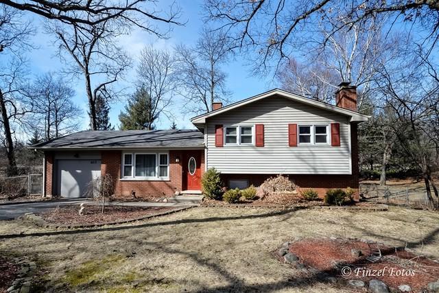 6213 Robin Lane, Crystal Lake, IL 60014 (MLS #09883608) :: Lewke Partners