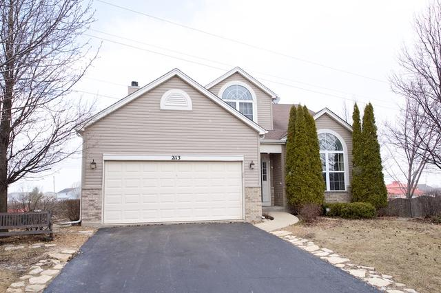 2113 Winding Lakes Drive, Plainfield, IL 60586 (MLS #09883690) :: The Jacobs Group