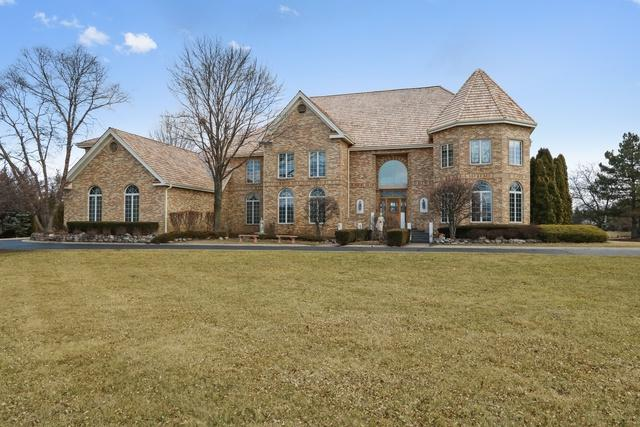 13 Pentwater Drive, South Barrington, IL 60010 (MLS #09883704) :: The Jacobs Group