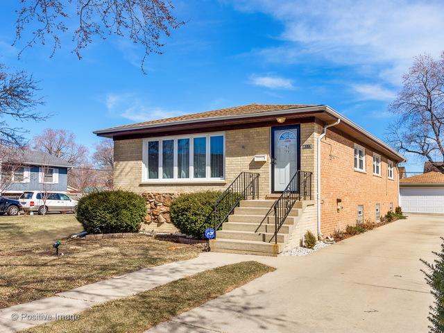 4117 Denley Avenue, Schiller Park, IL 60176 (MLS #09883867) :: Domain Realty