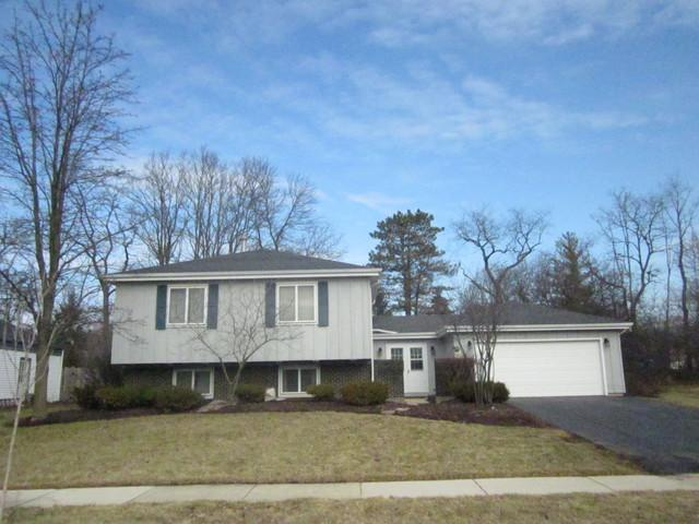 2019 Spring Green Drive, Wheaton, IL 60189 (MLS #09884415) :: The Jacobs Group