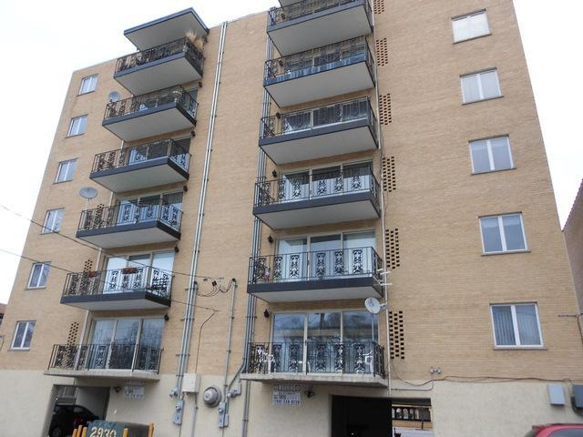 2930 N Harlem Avenue 6A, Elmwood Park, IL 60707 (MLS #09884951) :: The Jacobs Group