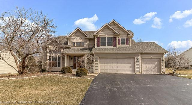705 Terry Lane, North Aurora, IL 60542 (MLS #09885614) :: The Jacobs Group