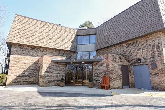 907 S Williams Street #216, Westmont, IL 60559 (MLS #09886145) :: Littlefield Group