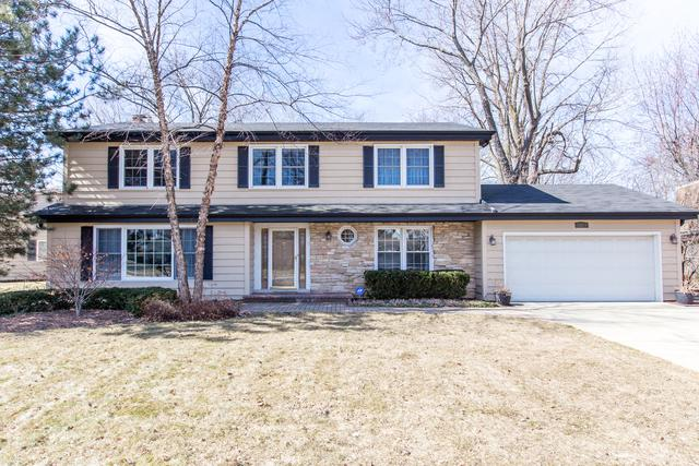 1324 Adirondack Drive, Northbrook, IL 60062 (MLS #09886207) :: The Jacobs Group