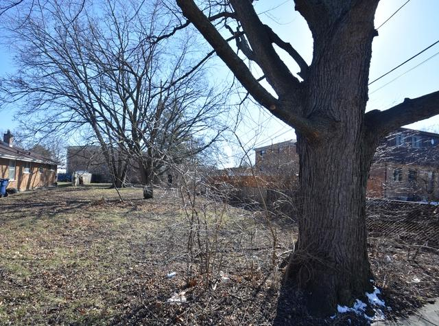 lot 3 N Church Street, Addison, IL 60101 (MLS #09886308) :: The Jacobs Group
