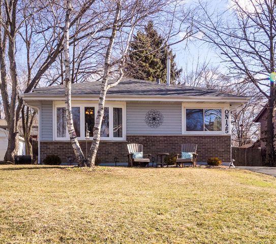 N125 Leonard Street, Winfield, IL 60190 (MLS #09886421) :: Domain Realty