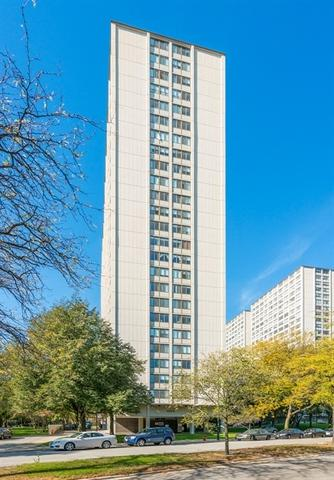 4850 S Lake Park Avenue #911, Chicago, IL 60615 (MLS #09886512) :: Domain Realty