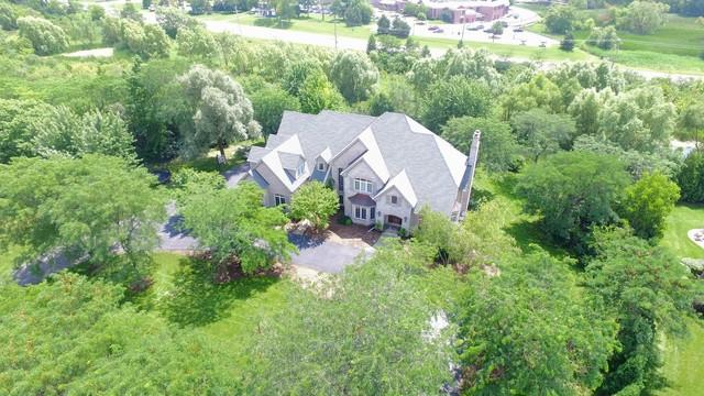 36 Old Lake Road, Hawthorn Woods, IL 60047 (MLS #09886632) :: The Schwabe Group