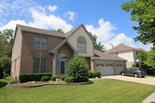 650 Middleton Lane, Des Plaines, IL 60016 (MLS #09886741) :: The Jacobs Group