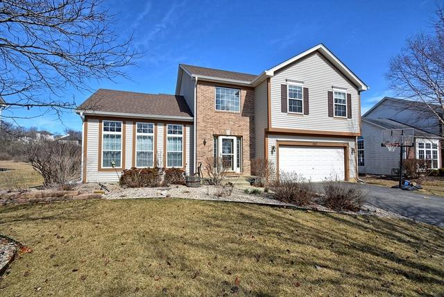 507 Edgewood Drive, Minooka, IL 60447 (MLS #09886810) :: Angie Faron with RE/MAX Ultimate Professionals