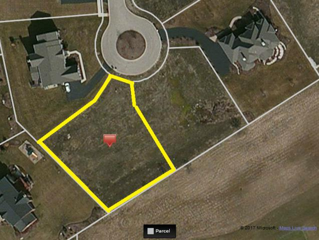 9 Prairie Landings Court, Hawthorn Woods, IL 60047 (MLS #09886837) :: The Schwabe Group
