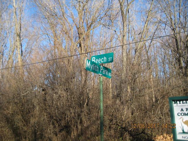 27771 N Beech Street, Island Lake, IL 60042 (MLS #09886851) :: Domain Realty