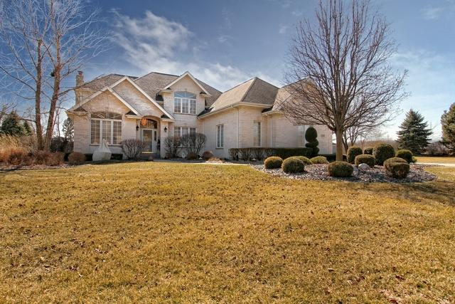 11767 Juanita Drive, Orland Park, IL 60467 (MLS #09886910) :: The Jacobs Group