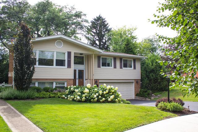 1307 W Heather Lane, Arlington Heights, IL 60005 (MLS #09886911) :: Lewke Partners