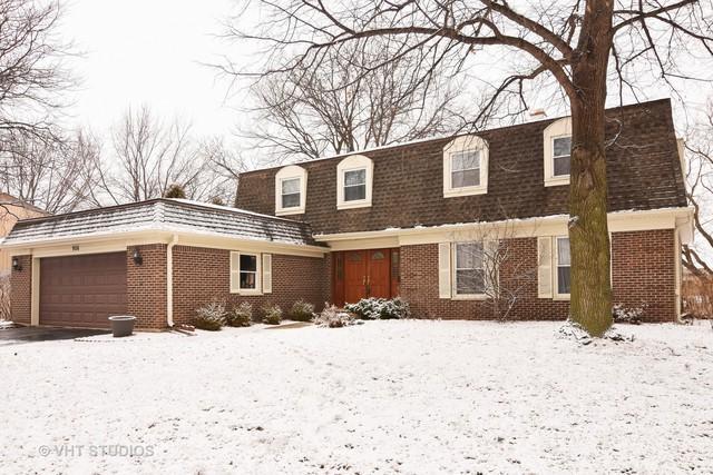 906 W Partridge Drive, Palatine, IL 60067 (MLS #09886913) :: The Schwabe Group