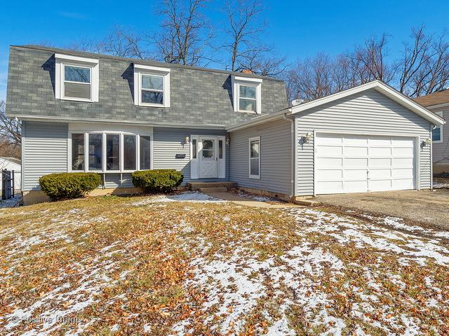 1509 Hill Avenue, Wheaton, IL 60187 (MLS #09887060) :: The Jacobs Group